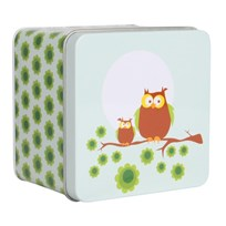 Small Box Owl