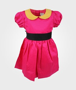 Livly Paige Dress Pink/Mustard