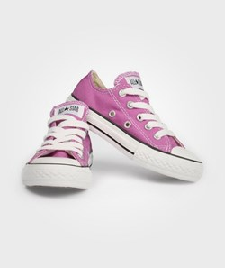 Converse All Star Ox Iris Orchid