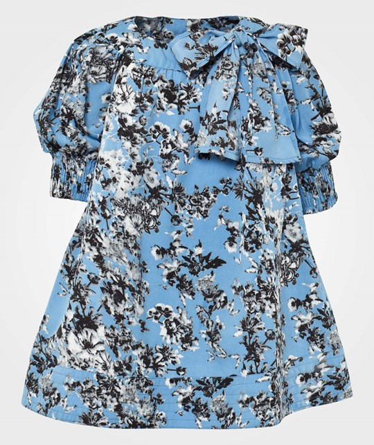 How To Kiss A Frog Dolly dress  Blue Flower Blue
