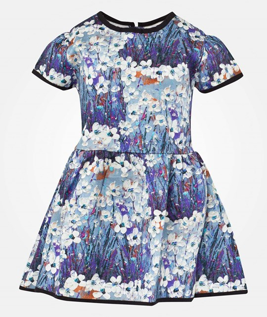 Livly Sandy Dress Painted Garden Multi