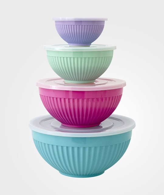 Rice Bowls With Lids Set of 4 Multi