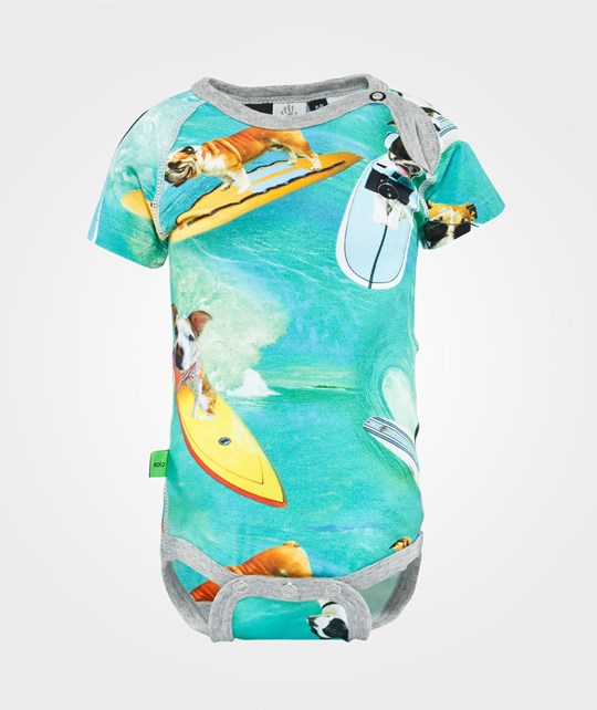 Molo Feodor Surf Dogs Surf Dogs