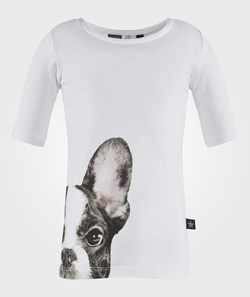 Molo Rae T-shirt SS French Bulldog