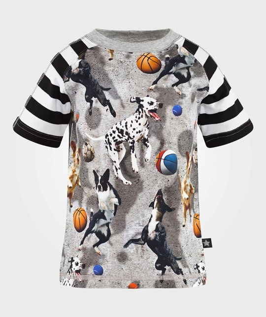 Molo Rollo T-shirt SS Leaping Dogs Leaping Dogs