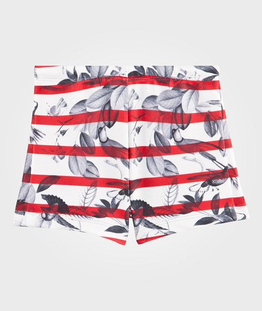 Wolf & Rita Francisco Swimsuit Shorts Red & White Red & White striped with black birds