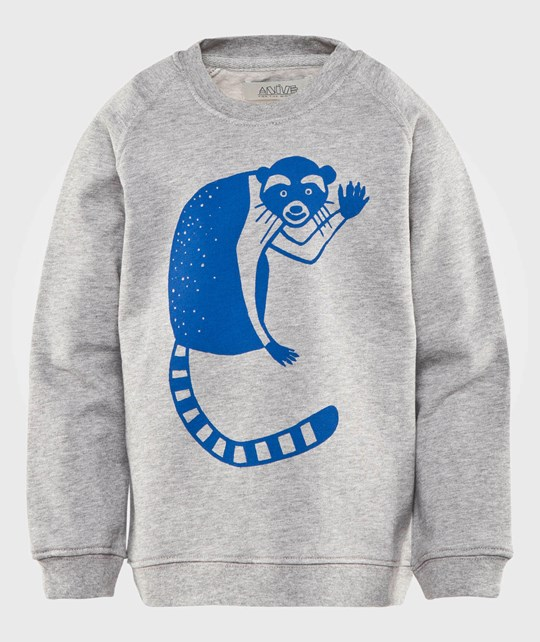 Anïve For The Minors Raccon Sweater Gråmelerad 20