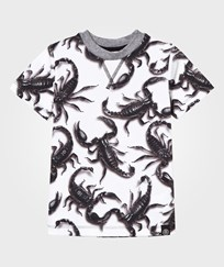 Molo Ralphie T-Shirt Scorpion Fight Scorpion fight
