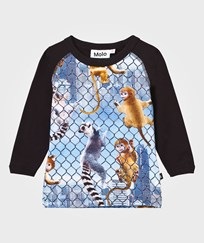 Molo Remington T-Shirt Climbing Monkeys Climbing Monkeys