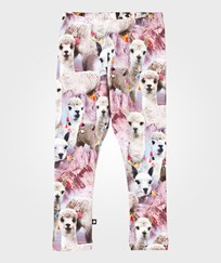 Molo Niki Leggings Lovely Llama Lovely Lhama