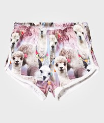Molo Aliza Shorts Lovely Llama Lovely Lhama