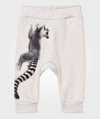 Molo Shelton Soft Pants Climbing Monkeys Climbing Monkeys