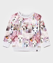 Molo Elsa T-Shirt Lovely Llama Lovely Lhama