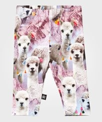 Molo Stefanie Leggings Lovely Llama Lovely Lhama