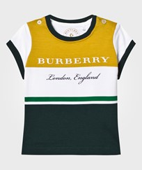 Burberry White and Green Stripe Branded Polo LARCH YELLOW