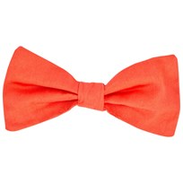 The Tiny Universe The Tiny Attachable Bow Tie/Orange Oranssi