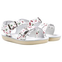 Salt-Water Sandals Sea Wee Premium Sandals Cherry Cherry