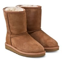 UGG Classic Chestnut Big Size  BROWN