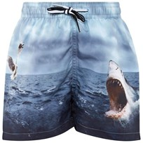 Molo Nikolai Boardies Shark Attack Shark Attack
