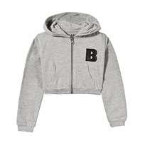 The BRAND Short Hoodie Grey Grey Mel