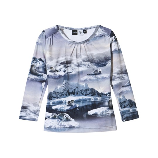 Molo Ruth T-Shirt Sunrise Seal Sunrise Seal