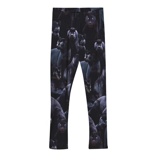 Molo Niki Leggings Moonlit Panthers Moonlit Panthers