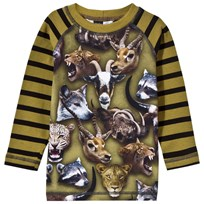 Molo Ryan Tee Animal Heads Animal heads