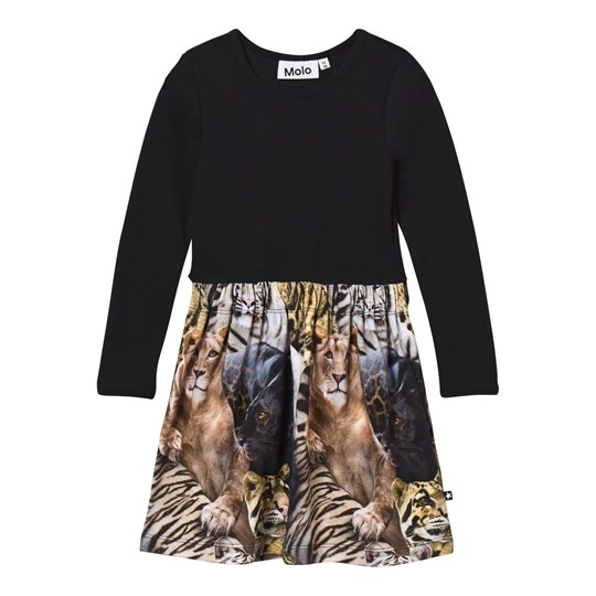 Molo Credence Dress Wild Cats Wild Cats