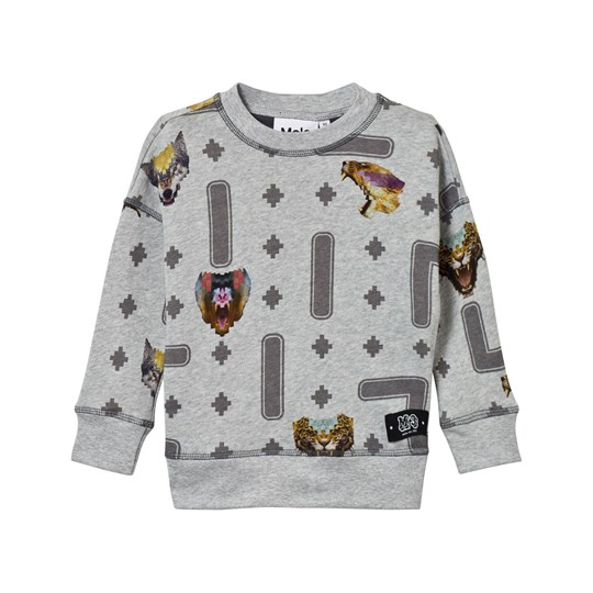 Molo Milton Sweater Animal Game Animal Game