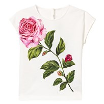 Dolce & Gabbana White Rose Embroidered and Print Tee W0111