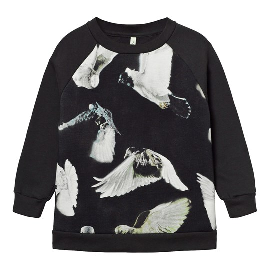 Popupshop Basic Sweat Black Birds Black Birds