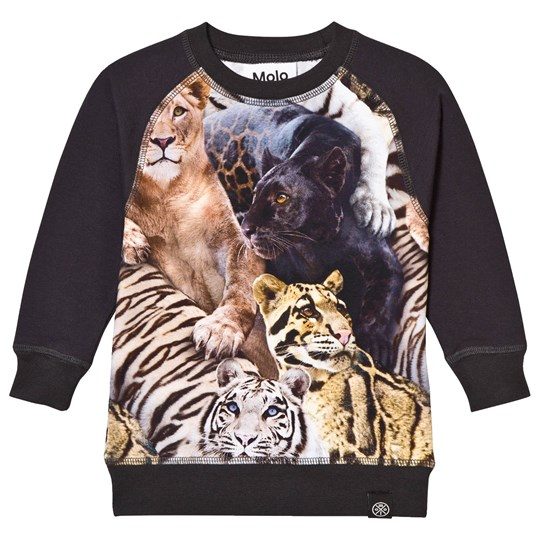 Molo Rodger T-Shirt Wild Cats Wild Cats