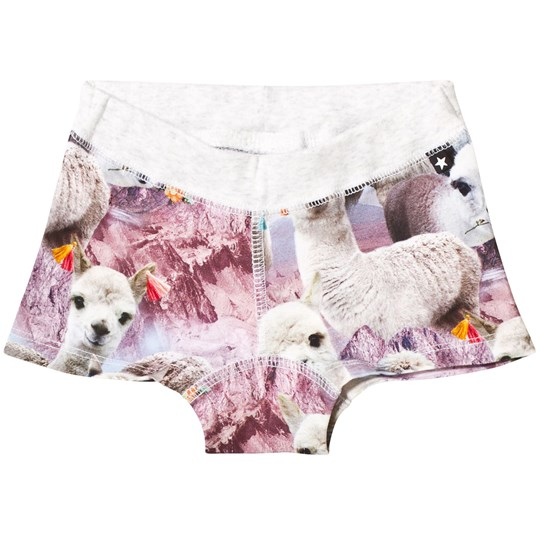 Molo Joanna Boy Shorts Lovely Llama Lovely Lhama