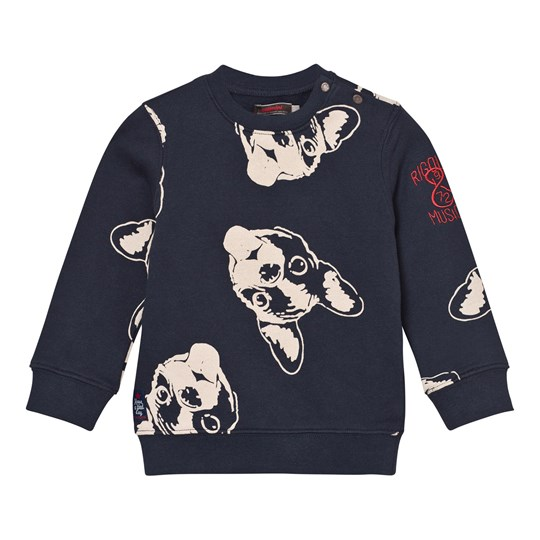Catimini Navy French Bulldog Print Sweater 49