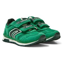 Geox Jr Pavel Sneaker Green C3000