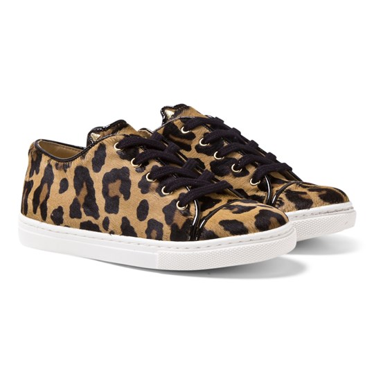 Charlotte Olympia Leopard Print Incy Purrrfect Sneakers Leopard