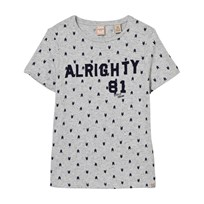 Scotch Shrunk Grey Alrighty Applique and Print Tee 594 DESSIN O