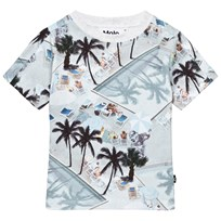 Molo Rey T-Shirt Swimmingpools Swimmingpools