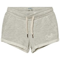 Oneill Silver Mambo Shorts SLVER MELEE