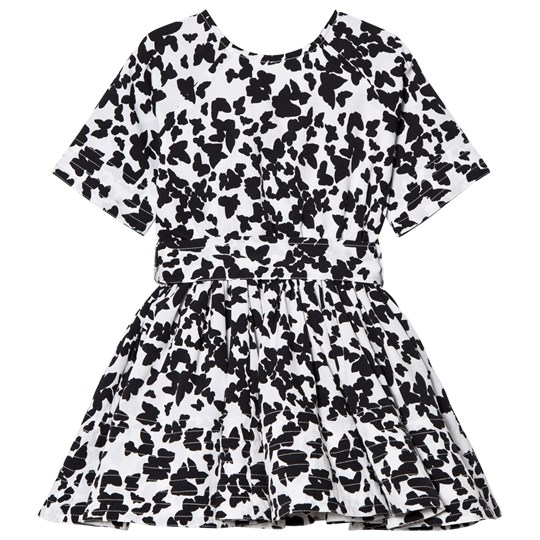 How To Kiss A Frog Siona Dress Black Bfly Black bfly
