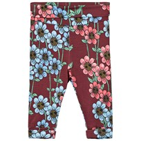 Mini Rodini Daisy Newborn Leggings Burgundy Burgundy