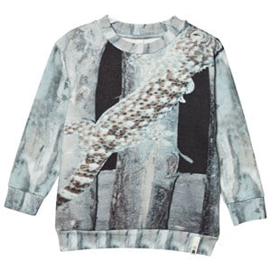 Image of Popupshop Loose Sweat Lizard 1.5-2 år (2743751029)