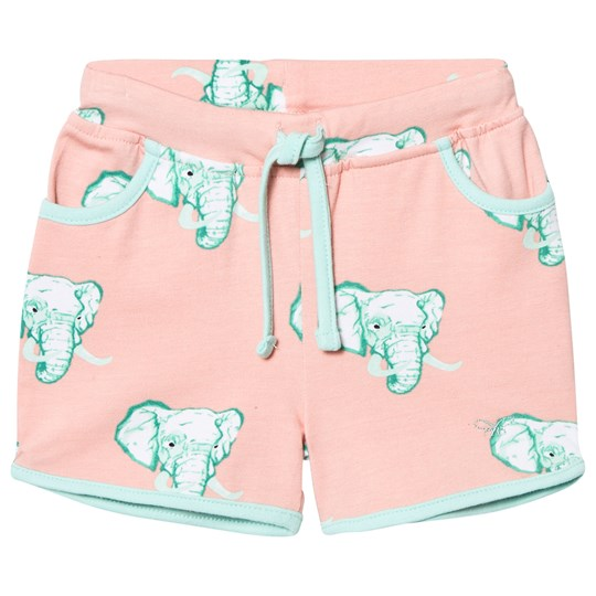 Livly College Shorts Coral Elephant Coral Elephant
