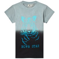 Nova Star Tiger Tee Grey Grey