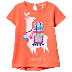Joules Orange Alpaca Applique and Embroidered Tee