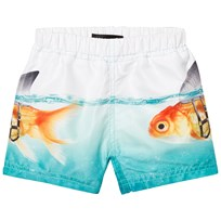 Molo Newton Trunks Scary Fish Scary Fish