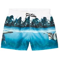 Molo Niko Swimming Shorts Singing Turtle Singing Turtle