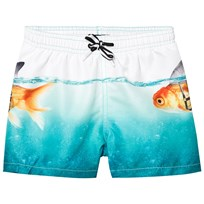 Molo Niko Swimming Shorts Scary Fish Scary Fish
