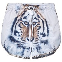 Popupshop Swim Shorts Long UV Tiger Tiger