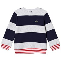 Lacoste Navy and Grey Sweatshirt WVC